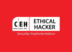Ethical Hacker - Security Implementation